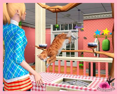 Домашние питомцы: кошки