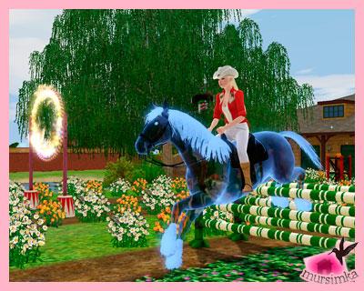 Верховая езда, карьера наездника, конные состязания